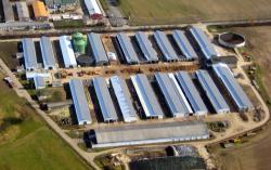 Alternative & Erneuerbare Energien News: Foto: Solarpark Löbnitz.