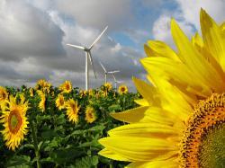 Alternative & Erneuerbare Energien News: Foto: Neue Energie: INDISTA 2009.