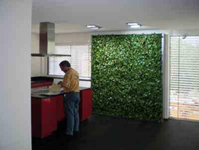 Pflanzen Tipps & Pflanzen Infos @ Pflanzen-Info-Portal.de |  >>>anwendungsbereiche-2.jpg<<<