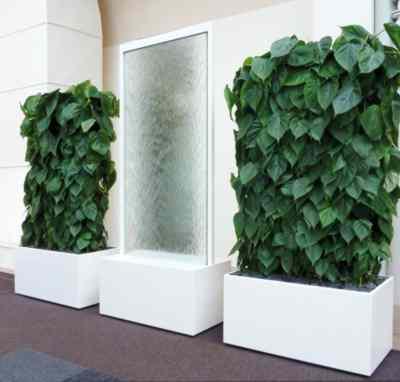 Pflanzen Tipps & Pflanzen Infos @ Pflanzen-Info-Portal.de | >>>art-aqua-trennwaende-2.jpg<<<