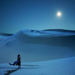 Freie Fotos & Freie Bilder @ Freie-Images.de | Freie-Images.de - Foto: Full Moon Calling @iStockphoto/piskunov: Foto des Jahres beim Punctum Day.