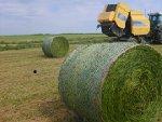 Landwirtschaft News & Agrarwirtschaft News @ Agrar-Center.de | Foto: Die professionelle Entsorgung von Ballennetzen und Garnen ist seit heute kein Problem mehr..