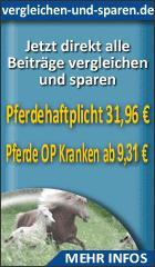 Landwirtschaft News & Agrarwirtschaft News @ Agrar-Center.de | Foto: Hilfe für den Ernstfall - die Pferde OP Kranken und Pferdekrankenversicherung zahlt Ihren Tierarzt!