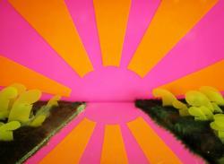 Ost Nachrichten & Osten News | Foto: Miami sunset - ein Scherenschnitt aus der Einzelausstellung MIKROLOGIE.