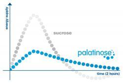 Neue Produkte @ Produkt-Neuheiten.Info | Foto: Palatinose ist das einzige voll verstoffwechselbare Kohlenhydrat mit geringem glykämischem Index, das lang anhaltende Energie in Form von Glukose liefert.