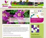 Einkauf-Shopping.de - Shopping Infos & Shopping Tipps | Foto: www.garden-and-flowers.de.