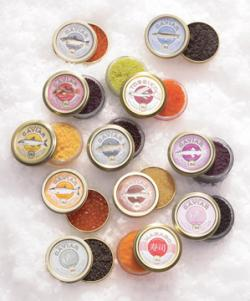 Einkauf-Shopping.de - Shopping Infos & Shopping Tipps | Foto: Das Trend-Caviar-Sortiment vom Altonaer Kaviar Import Haus. Foto: Konstantin Eulenburg.