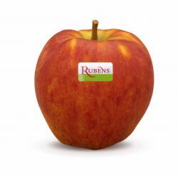 Landwirtschaft News & Agrarwirtschaft News @ Agrar-Center.de | Foto: Rubens® - die neue Apfelsorte mit mehr Geschmack.