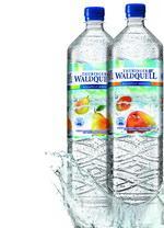 Neue Produkte @ Produkt-Neuheiten.Info | Foto: Neu von Thüringer Waldquell: Aquaplus Birne und Mango.