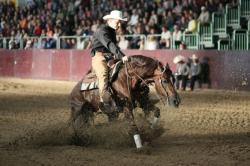 Ost Nachrichten & Osten News | Foto: Die Disziplinen im Westernreiten sind angelehnt an die Anforderungen, die ein Cowboy bei der Arbeit an der Herde zu bewältigen hat.