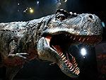 Medien-News.Net - Infos & Tipps rund um Medien | Die facettenreiche Show >> Dinosaurier - Im Reich der Giganten << dauert insgesamt 96 spannende und actionreiche Minuten – inklusive einer Pause!