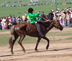 Ost Nachrichten & Osten News | Ost Nachrichten / Osten News - Foto: Kinder beim Pferderennen in Ulan Bator.