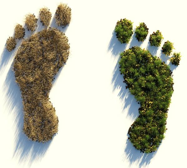Medien-News.Net - Infos & Tipps rund um Medien | Die CO2-Steuer könnte auch umweltpolitisch Gutes bewirken - Bildvermerk: Bild von Colin Behrens auf Pixabay