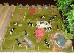 Landwirtschaft News & Agrarwirtschaft News @ Agrar-Center.de | Agrar-Center.de - Agrarwirtschaft & Landwirtschaft. Foto: Wenn wie mit diesem Exponat mit Bilderbuch-Idyllen geworben wird, wirkt die Realität schockierend und beschädigt das Ansehen der Landwirtschaft. Aufn.: Ingrid Wendt.