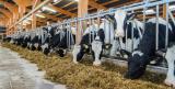 Landwirtschaft News & Agrarwirtschaft News @ Agrar-Center.de |