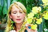 Orchideen-Seite.de - rund um die Orchidee ! | Foto: Marei Karge-Liphard, Inhaberin des Orchideengarten Karge in Dahlenburg