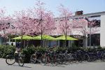 Landwirtschaft News & Agrarwirtschaft News @ Agrar-Center.de | Foto: Cafe Rheinische, Campus, l.w.