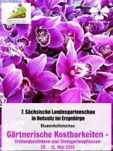 Deutsche-Politik-News.de | Foto: Orchideengarten Karge auf der Landesgartenschau in Oelsnitz