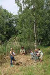 Pflanzen Tipps & Pflanzen Infos @ Pflanzen-Info-Portal.de | Foto: Junior Ranger packen an, N. Künkler, Nationalparkamt Müritz