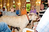 SeniorInnen News & Infos @ Senioren-Page.de | Foto: © Domus Mea: Tierischer Besuch als Therapie bei Demenz.