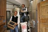 Bier-Homepage.de - Rund um's Thema Bier: Biere, Hopfen, Reinheitsgebot, Brauereien. | Foto: Alois Planner und Klaus Feistritzer.
