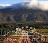 Afrika News & Afrika Infos & Afrika Tipps @ Afrika-123.de | Foto: © Springfontein Wine Estate, Stanford, Western Cape
