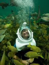 Ost Nachrichten & Osten News | Foto: Auf Tauchgang beim neuen Sea Trek Reef Encounter im Miami Seaquarium.