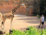 Zoo-News-247.de - Zoo Infos & Zoo Tipps | Foto: Per Mertesacker mit Patenkind Juji.