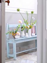 Orchideen-Seite.de - rund um die Orchidee ! | Foto: Zwiebelpracht fürs eigene Zuhause.