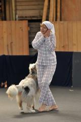 Tier Infos & Tier News @ Tier-News-247.de | Foto: Dogdance Turnier Gertau / Schweiz.