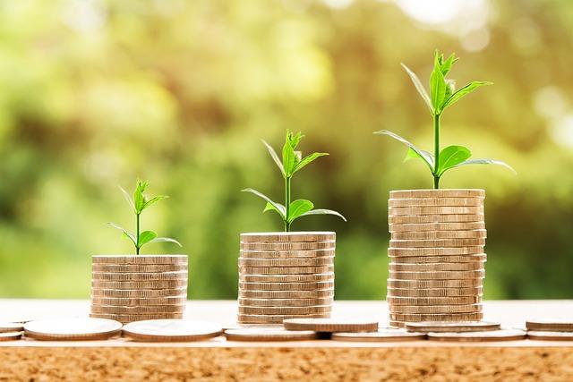 Internet Portal Center | Finanzen, Gewinn, Wachstum