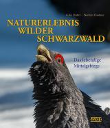 Orchideen-Seite.de - rund um die Orchidee ! | Foto: NATURERLEBNIS WILDER SCHWARZWALD - Das lebendige Mittelgebirge!