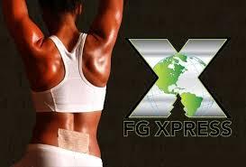 Asien News & Asien Infos & Asien Tipps @ Asien-123.de | FGXpress Powerstrips Schmerzpflaster