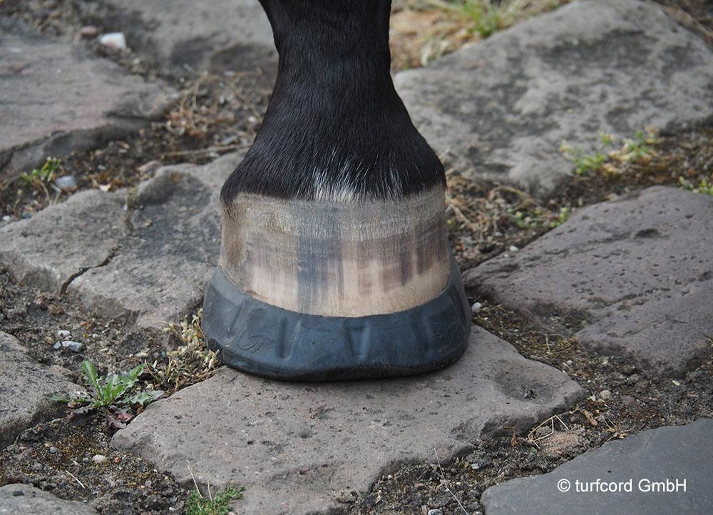 Internet Portal Center | Klebebeschläge sind die ideale Alternative für starke und gesunde Pferdehufe. Foto: turfcord GmbH