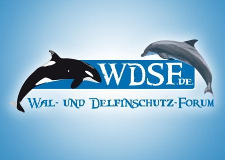 Deutsche-Politik-News.de | Wal- und Delfinschutz-Forum (WDSF)